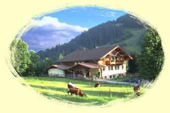 unser Haus liegt auf 900 m Seehöhe - Ausgangspunkt für viele Wanderungen, 5 Gehminuten zur Kabinenbahn Grafenberg und in die Wasserwelt Amadé in Wagrain